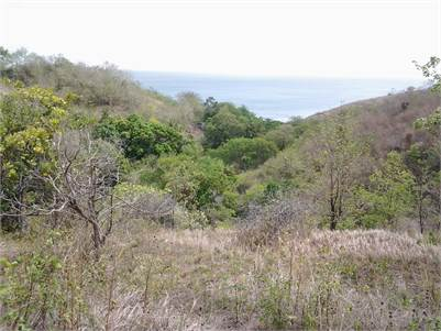 Land for sale in Choiseul - 5 Acres