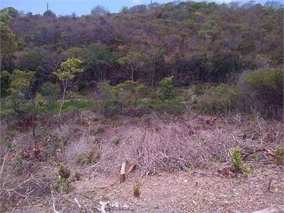 Land for sale at Canelles Vieux-Fort